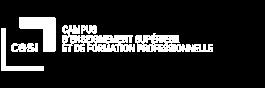 Logo CESI Campus d'Enseignement Supérieur et de Formation Professionnelle